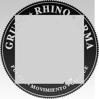 Grupo Rhino ArmA